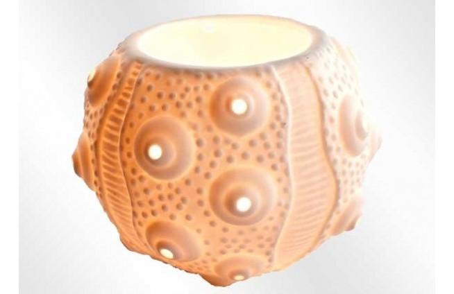 Kerzenhalter Seeigel